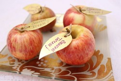 Shanah Tova apple decor