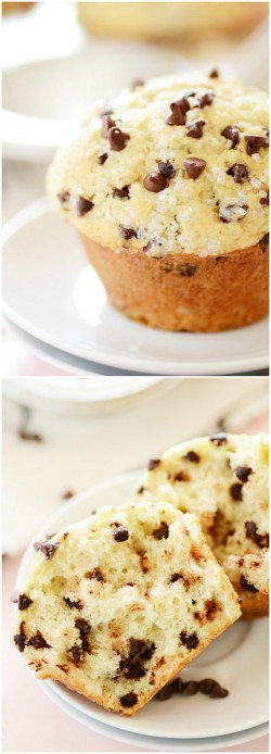 Bakery style choco chip muffins  1 cup milk  1/4 cup vinegar  2 1/2 cups all-purpose flour  1 tb ...