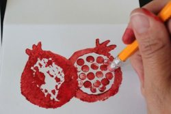 pomegranate eraser stamp